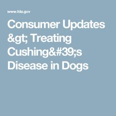Consumer Updates > Treating Cushing's Disease in Dogs