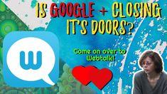 Shake, Closer, Social Media, Marketing, Google, Smoothie, Social Networks, Social Media Tips