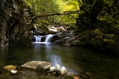 Tranquility by Lilian Valerio on 500px