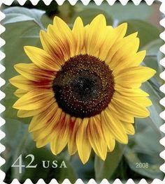 2008 USA Sunflower Postage Stamp