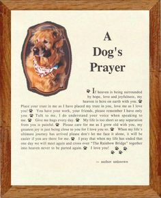 ♥ A Dog's Prayer
