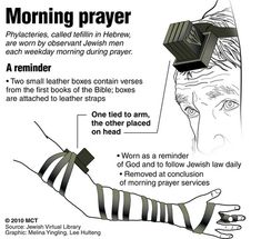 Phylacteries abort flight: Jewish prayer ritual item mistaken for bomb; Messianic Judaism, Jewish Men, Learn Hebrew, Hebrew Words, Jewish History, Religious Studies, Bible Teachings, Torah, Prayers