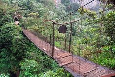 Banos - Ecuador I don't know if I can walk across something like this...