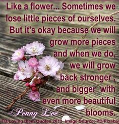 Flower quote via Loving Them Quotes on Facebook