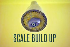 Scale Build Up