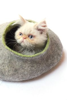 cat house / cat bed / cat cave / cat vessel, handmade from natural wool in grey/green by grazim $55.00