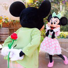 Mickey and Minnie Mouse! Walt Disney, Disney Love, Disney Mickey, Disney Parks, Disney Couples, Disney Family, Disney Stuff, Disney World Fotos, Disney World Pictures