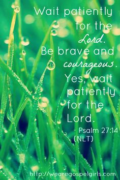 Wait patiently for the Lord - Psalm 27:14 #dosesofhope FB - #rootedinromans