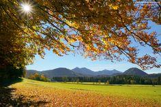 #Herbstfotos aus dem #Mariazellerland