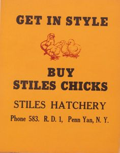 Original Vintage Stiles Hatchery Get in Style by HodesH on Etsy, $25.00