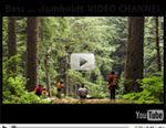 Travel Info for the Redwood Forests of California, Eureka and Humboldt County //been here.