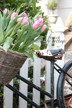 vintage bicycle planter from French Country Cottage