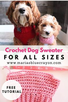 Free crochet tutorial to make a dog sweater in any and all sizes! patterns for dogs Crochet Basic Dog Sweater - Free Step by Step Tutorial - Maria's Blue Crayon Crochet Dog Sweater Free Pattern, Dog Coat Pattern, Crochet Dog Patterns, Knit Dog Sweater, Free Crochet, Crochet Sweaters, Crochet For Dogs, Crochet Shrugs, Sweater Patterns
