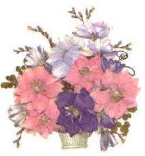 press flower - Google 검색