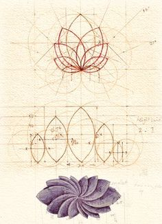 Resultado de imagen para flor de loto geometria sagrada