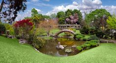 The Huntington park and library in Pasadena, California has a gorgeous Japanese garden that was recently renovated for $ 6.8 million. (Photo: Getty Images)