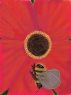 Is pollination like opium?