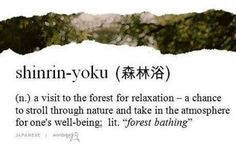 """Shinrin-yoku is a Japanese word that translates to """"forest bathing"""" and it means to spend time in the woods for the therapeutic effects. You breathe in phytoncides that are released by plants. Words To Use, Great Words, New Words, Japanese Quotes, Japanese Words, Japanese Symbol, Beautiful Meme, Beautiful Words, Beautiful Things"""
