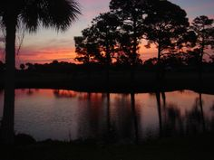 Englewood, FL : This sunrise was taken in our backyard on the Hills Golf Course Englewood Beach, Englewood Florida, Places Ive Been, Places To Go, Beach Town, Florida Home, Key West, Picture Show, Beautiful Images