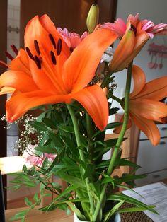 27.08. - mich selbst mit Blumen zu beschenken macht mich glücklich. #happinesschallenge #100happydays