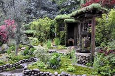 Chelsea Flower Show's Winning Gardens are Sustainable and Stunning