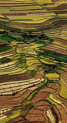 Betsiboka, Madagascar. Terraced rice fields of East Africa. Enjoy your stay in Madagascar with theculturetrip.com
