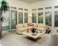 Our new larger shutters with wide panels