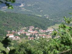 Comune di Lisciano Niccone \ Sindaco - Gianluca Moscioni \ Altitudine - 314 m.s.l.m. \ Superficie - 41,30  km² \ Abitanti - 627 \ Densità - 17,65 ab/km² \ Frazioni - Crocicchie, Gosparini, Pian di Marte, Reschio, San Martino \ Comuni confinanti - Cortona, Passignano sul Trasimeno, Tuoro sul Trasimeno, Umbertide \ \ Nome abitanti - Liscianesi \Cod. Postale - 06060 \ Patrono - San Benedetto.