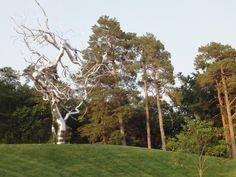 roxy paine - nelson atkins museum , sculpture park , kansas city