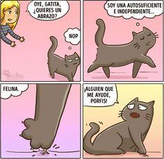 Cómic gato en casa cuando necesita tu ayuda