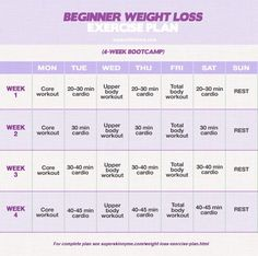 Beginner Weight Loss Exercise Plan