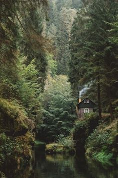 Parc national de la Suisse saxonne @ andyto - I'd love to live here. Anyone down to be roommates in this cabin? Parc National, National Parks, Cabins In The Woods, Cottage In The Woods, House In The Woods, Adventure Is Out There, Belle Photo, The Great Outdoors, Wilderness