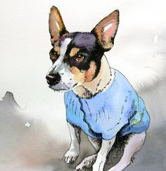 Laika by Suzy @ Painted Pets