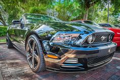Ford Shelby Mustang GT 5.0 by Rich Franco
