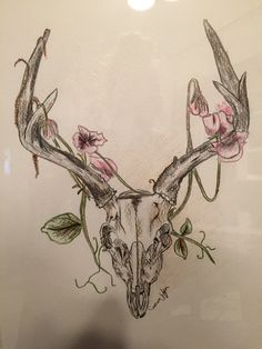 Deer skull drawing