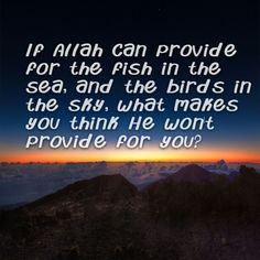 If Allah can provide for the fish in the sea, and the birds in the sky, what makes you think He won't provide for you?