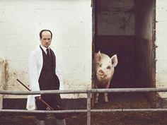 Matthew Herbert, One Pig RNCM