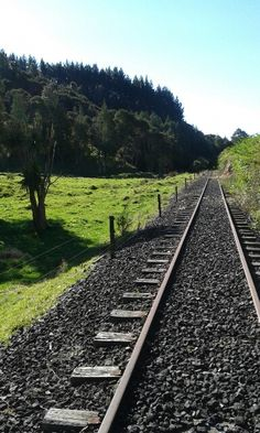 Awakeri Rail Adventures crosses over beautiful lush farmland and beside exotic native bush carefully preserved by the Department of Conservation (DOC ) in Whakatane New Zealand. Crosses, Conservation, Railroad Tracks, New Zealand, Lush, Exotic, Adventure, Beautiful, Adventure Movies