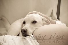 maternity with dog - have to have this with Mack if we have another...MUST