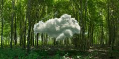 Clouds by Dietrich Wegner.
