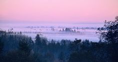 """""""Reaching the Dawn,"""" by Renae Smith on """"Capture Southwest Washington"""" -- """"This is a view on my daily drive to work near Hockinson. I rarely get there at sunrise -- only this time of year when sunrise is late enuf for a nightowl!"""""""