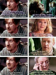 Remus and Tonks. Molly Weasley. Arthur Weasley. Minevra McGonagall. Harry Potter.
