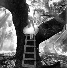 This is one of my favorite photographs of all time, Rodney Smith is amazing and I only hope I can afford to buy this in print one day!