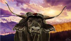 Un búfalo, pariente medio de mis vacas, que ha dibujado el ilustrador Miguel del Cerro. Estupendo.