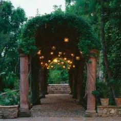 A thick canopy of orange trumpet vine  forms over an arbor at Casa Chorro. Tin stars glow from above.