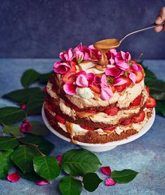 Suolakinuski-mansikkabrita | Leivonta, Juhli ja nauti, Makea leivonta | Soppa365 Piece Of Cakes, Cheesecake, Sweets, Baking, Holiday, Desserts, Food, Sun, Tailgate Desserts