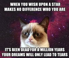 This is the best grumpy cat ever!