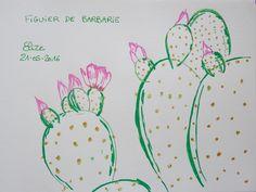 Figuier de barbarie, cactus #dessin aux crayons feutres http://www.pigmentropie.fr