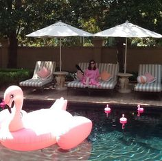 Social Hour Bravo's Southern Charm matriarch Patricia Altschul hangs poolside at her Charleston mansion in the company of a flock of flamingos.
