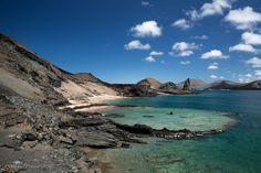 2017 REEF trip -- Galapagos Islands - M/V Galapagos Sky Liveaboard   Reef Environmental Education Foundation (REEF)